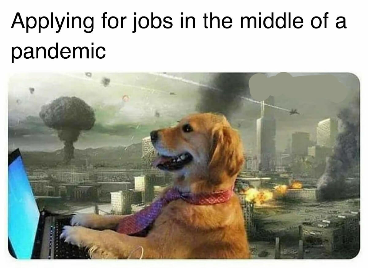 funny meme applying for jobs middle of pandemic
